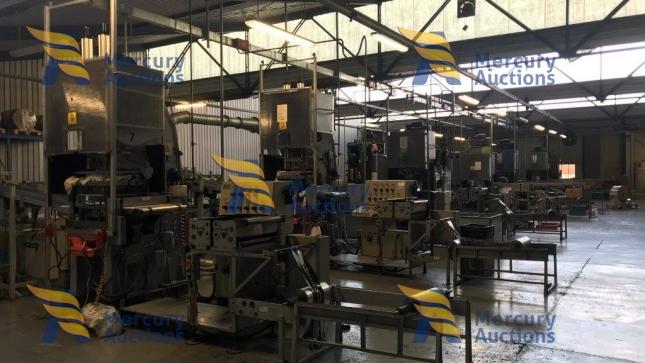 azienda di produzione vaschette per alluminio (3)