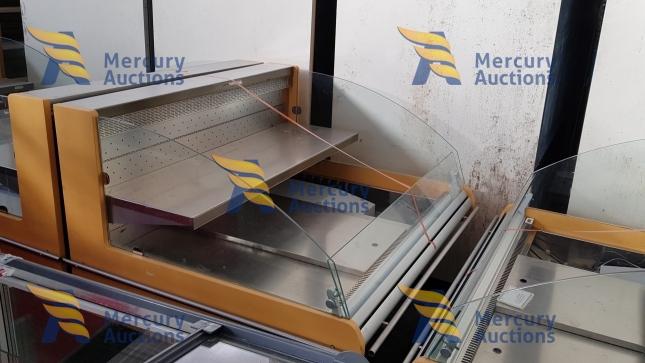 arredamento supermercato - banchi frigo - espositori frigo - carrelli - carrelli pvc (11)