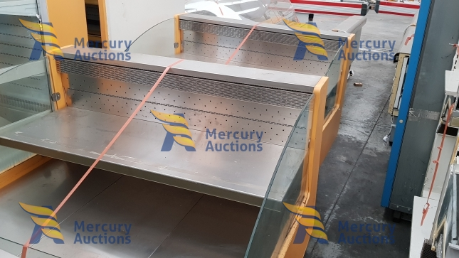 arredamento supermercato - banchi frigo - espositori frigo - carrelli - carrelli pvc (4)